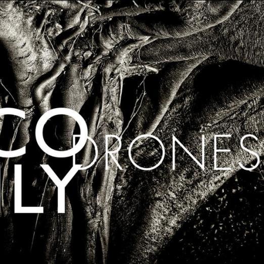nico-muhly-drones